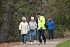 Mr. Pedometer Walking in a park in the winter with other walkers