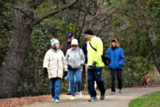 Group of people walking on a cold morning